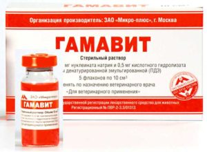 Упаковка лекарства гамавит