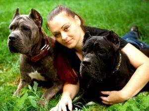 Две собаки кане корсо