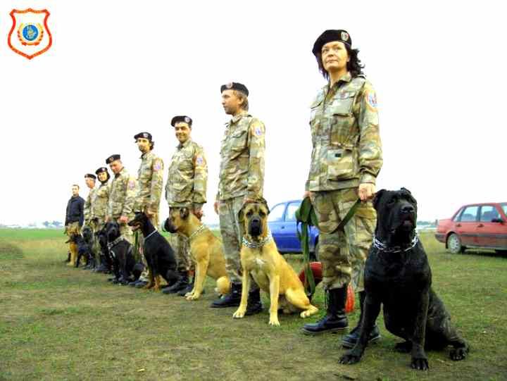 Собака на службе полиции