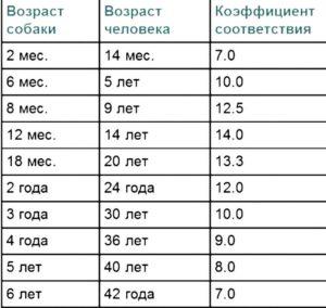 Коэффициент возрастов