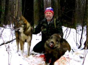 Охотник и сибу ину