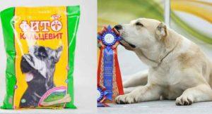 Избежать этого может помочь витаминный комплекс Фитокальцевит для собак.