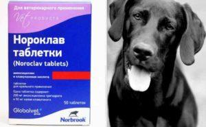 антибактериальное средство широкого спектра воздействия