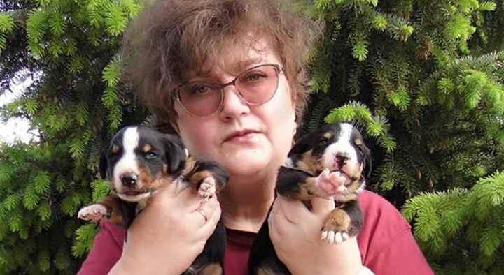 У вашей собаки есть весь пакет документов, подтверждающих её родословную;