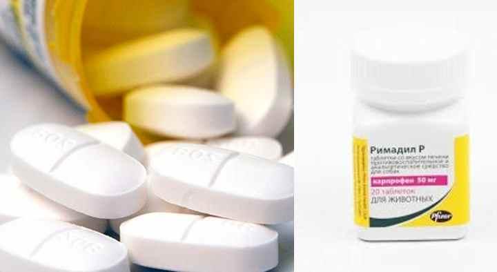 Таблетки имеют круглую форму, светло-коричневого цвета