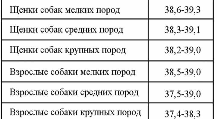 Температурные нормы для разных пород