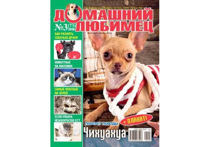 журнал, который с большим удовольствием читают дети