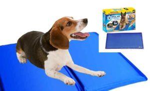 Отличным решением становится охлаждающий коврик для собак.