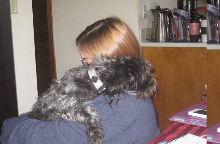 Отучить собаку скулить во время вашего отсутствия