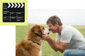 ТОП-10 лучших фильмов про собак: лучшие кинофильмы с участием псов- Обзор