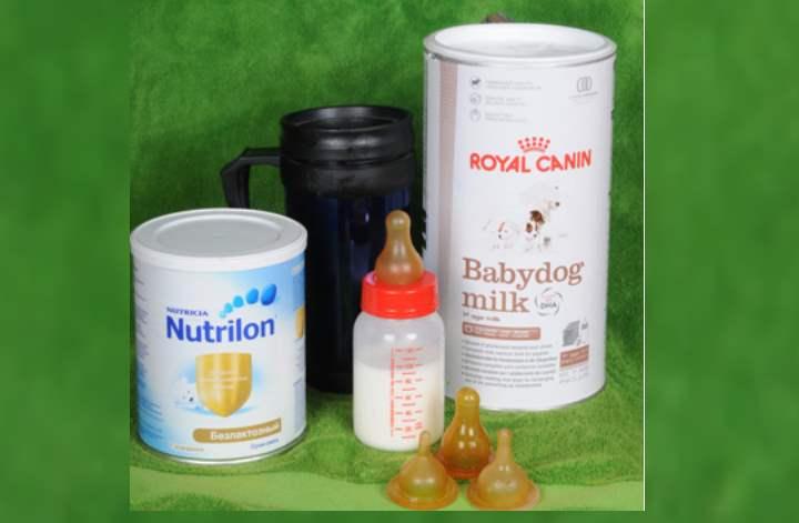 заменитель сухого молока, который будет соответствовать