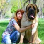будучи щенком собаку необходимо познакомить с другими людьми и животными